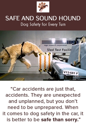 dog_car_safety_i